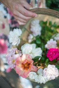 Profitez à l'infini d'une floraison des roses longue durée